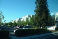 Apple Campus, Cupertino