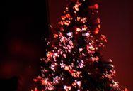 Christmas Tree, with Lights